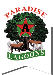 Paradise Lagoons Campdraft